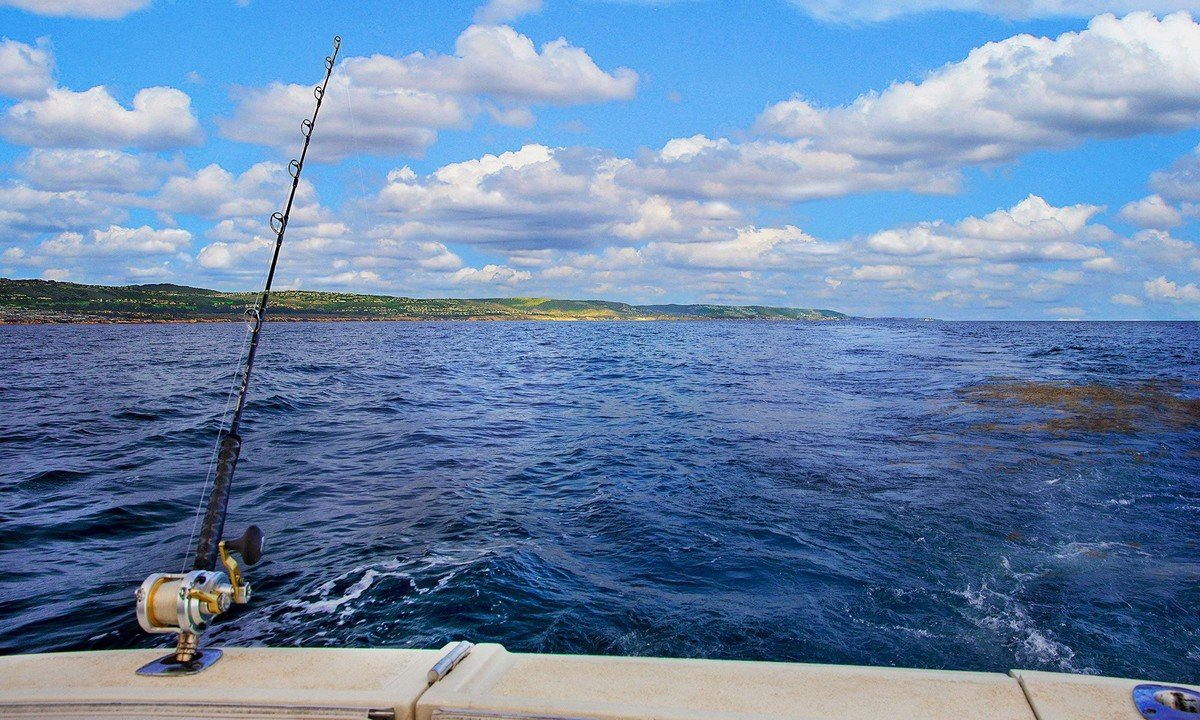 oakley polarized sea